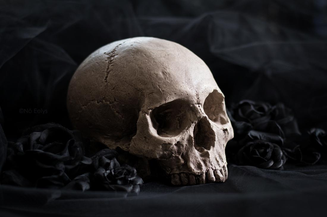 Réplique de crâne humain fait main par Vicious Noodles (déco d'inspiration gothique et victorienne)