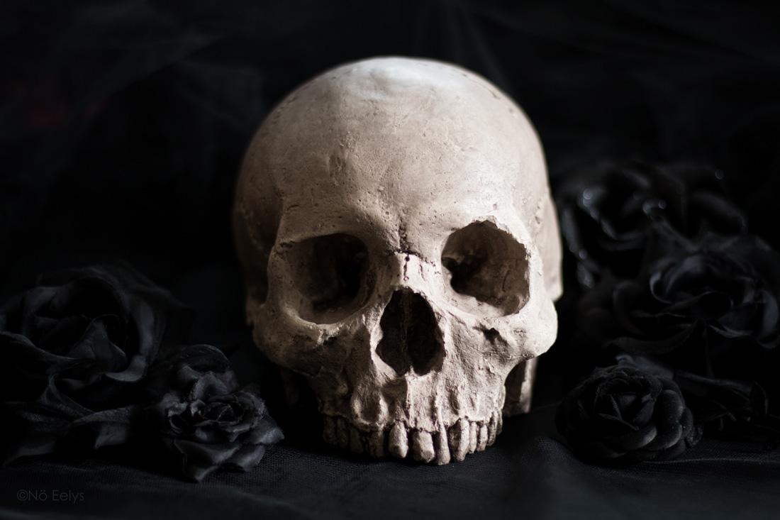 Réplique de crâne humain fait main par Vicious Noodles de face (déco d'inspiration gothique et victorienne)
